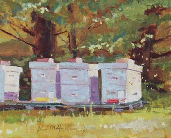 Bee Hives Under Pines